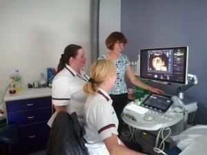 Sonographer Cardiac Training